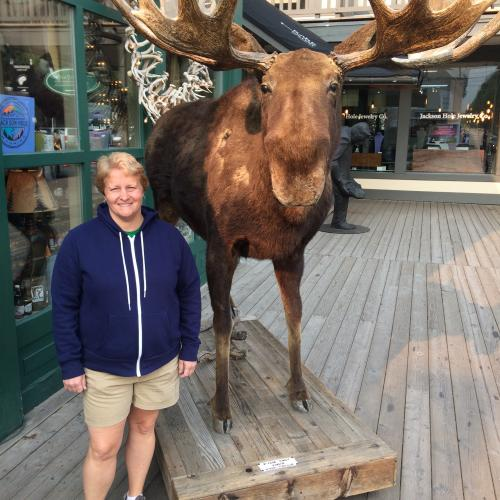 Stuffed Moose Downtown Jackson Hole
