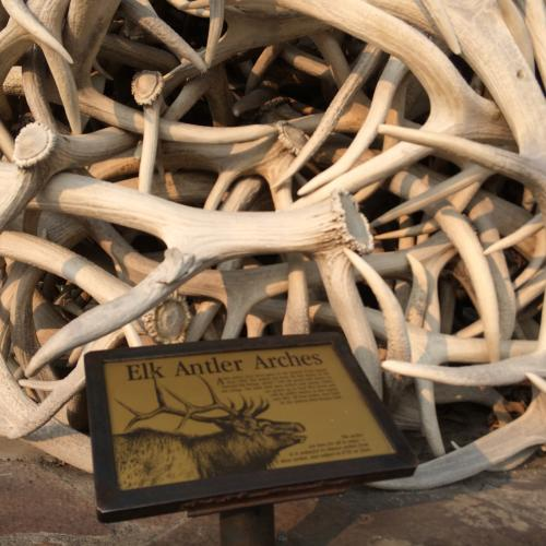 Elk Antler Arch in town center