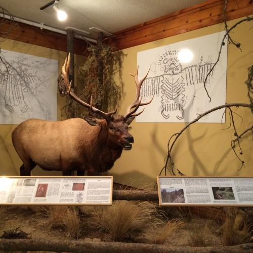 Jackson Hole Museum - history of the town